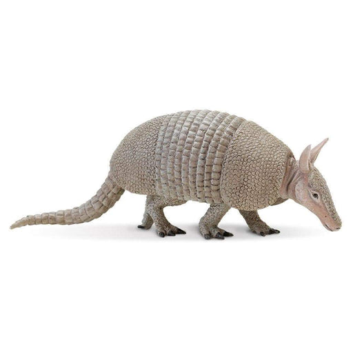 Armadillo - Safari Ltd®