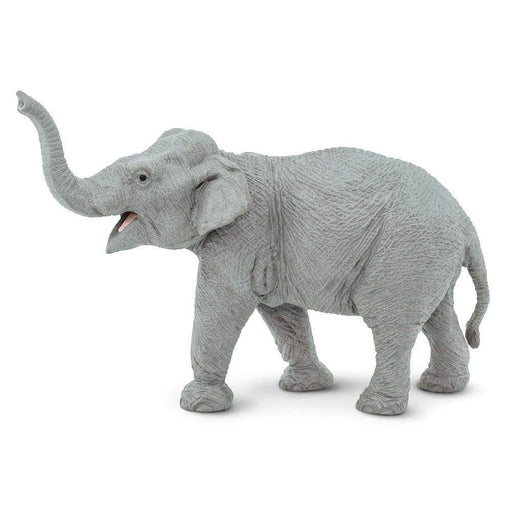 Asian Elephant - Safari Ltd®