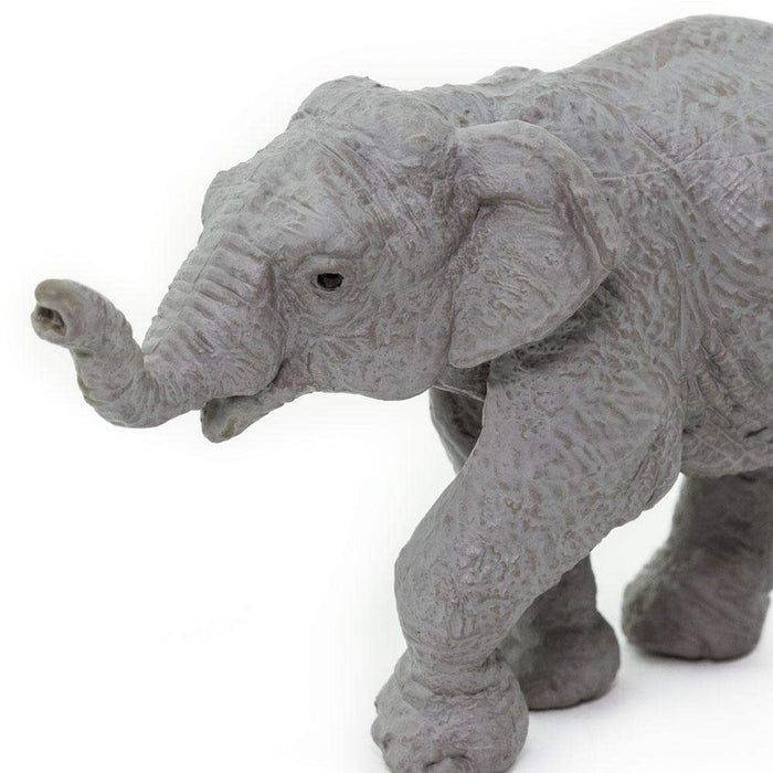 Asian Elephant Baby - Safari Ltd®