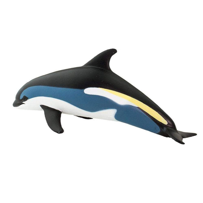 Atlantic White-Sided Dolphin - Safari Ltd®
