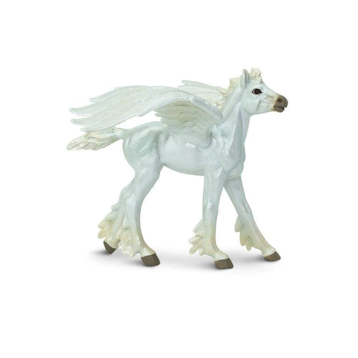 Baby Pegasus - Safari Ltd®