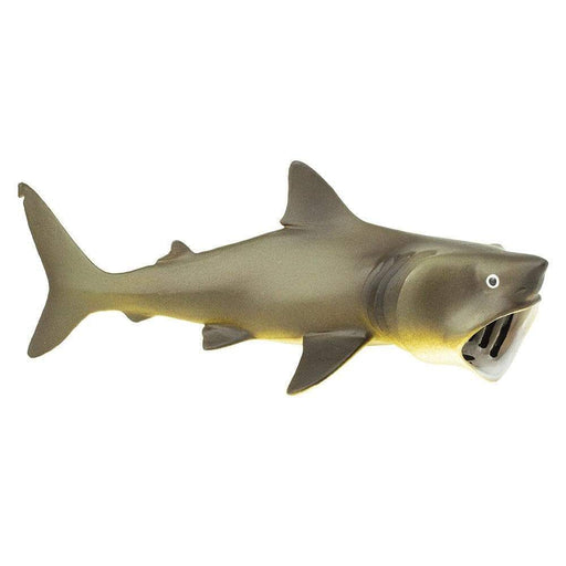 Basking Shark Toy - Sea Life Toys by Safari Ltd.