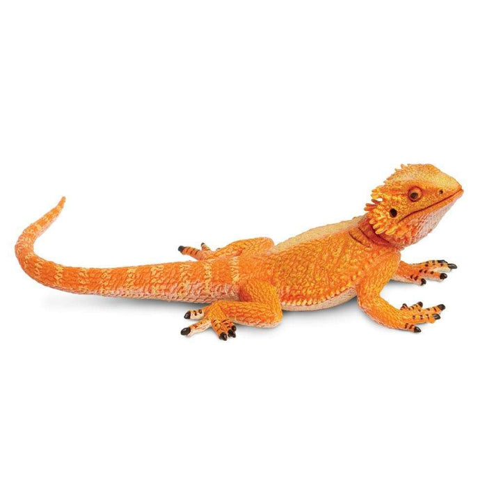 Bearded Dragon - Safari Ltd®