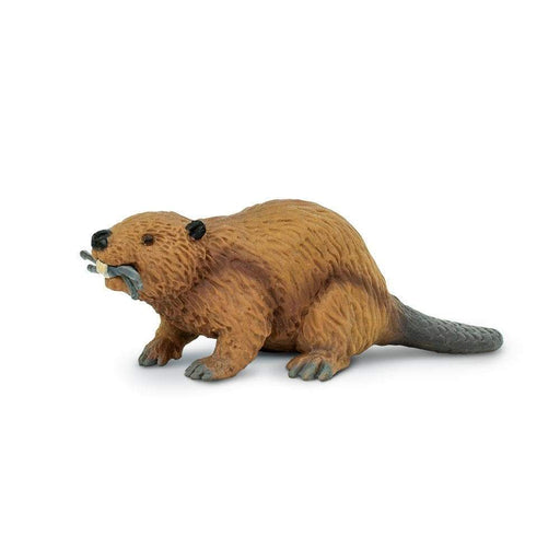 Beaver Toy | Wildlife Animal Toys | Safari Ltd.