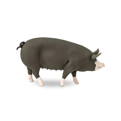 Berkshire Pig - Safari Ltd®