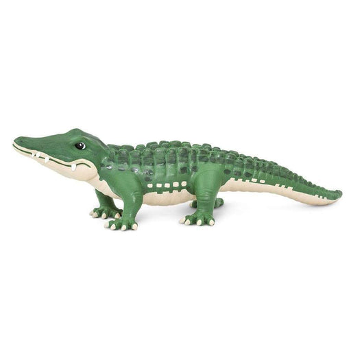 Bernie Toy | Wildlife Animal Toys | Safari Ltd.