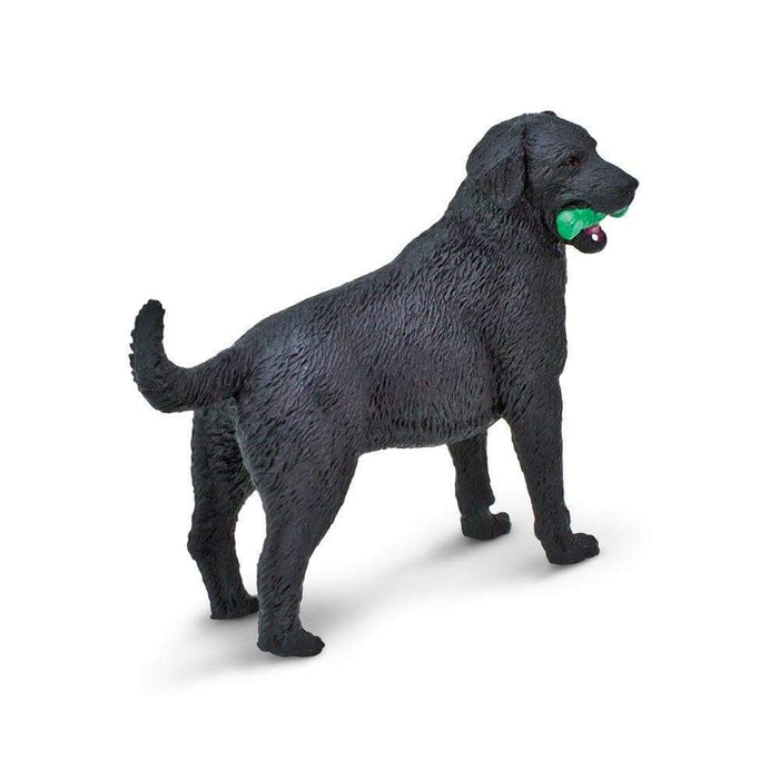 Black Labrador - Safari Ltd®