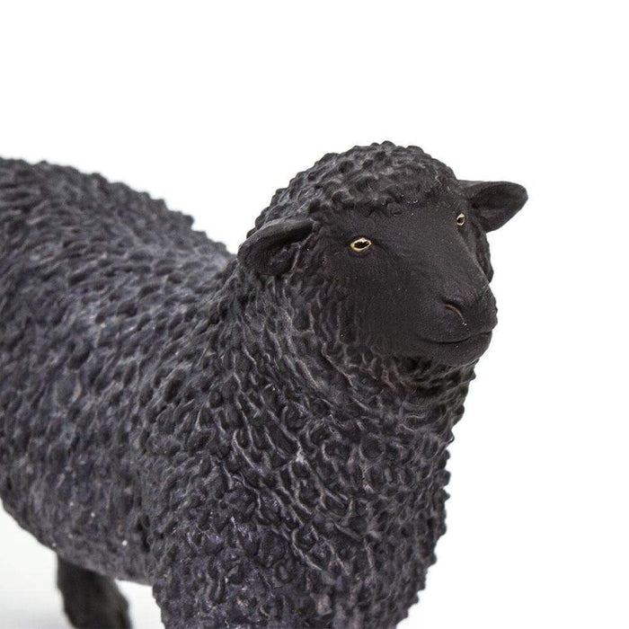Black Sheep - Safari Ltd®
