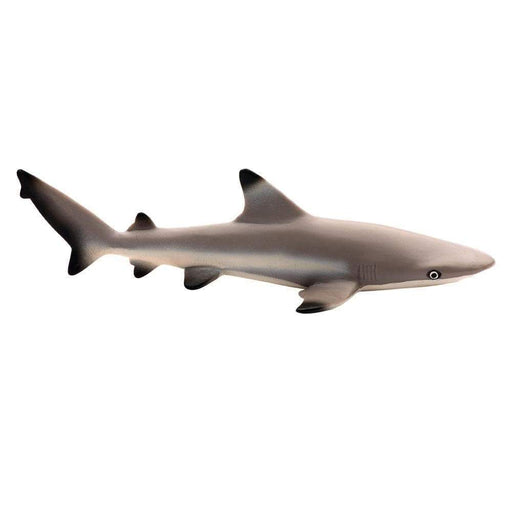 Blacktip Reef Shark Toy - Sea Life Toys by Safari Ltd.