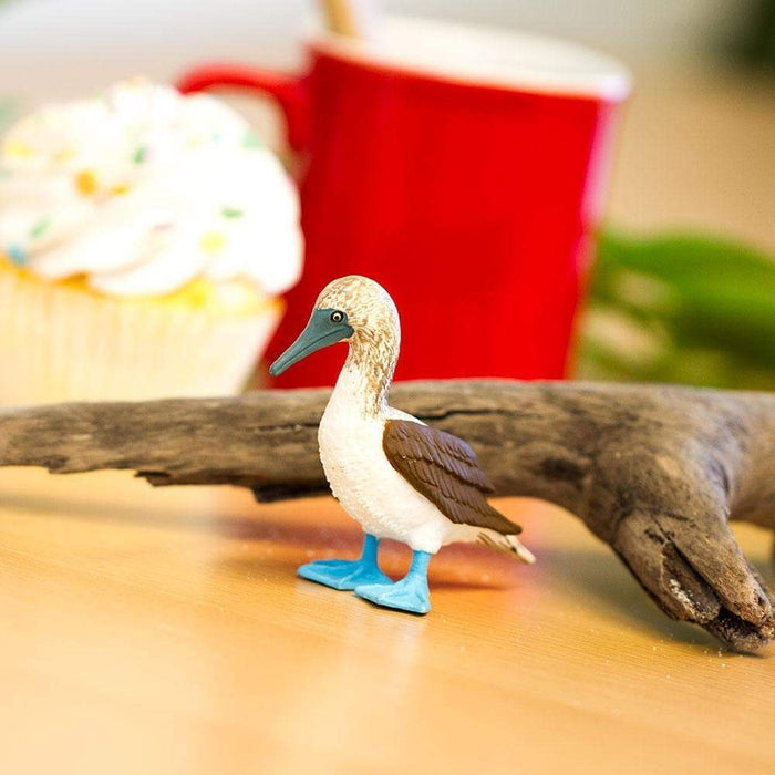 Blue Footed Booby Toy | Wildlife Animal Toys | Safari Ltd.