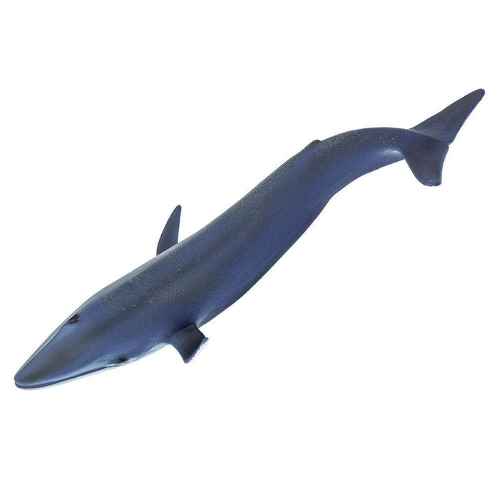 Blue Whale - Safari Ltd®