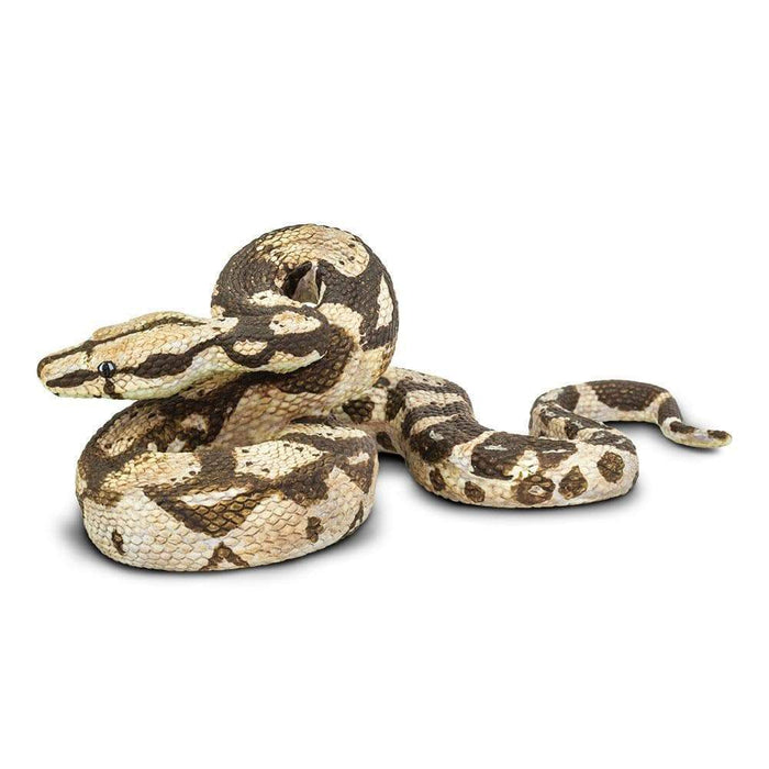 Boa Constrictor - Safari Ltd®