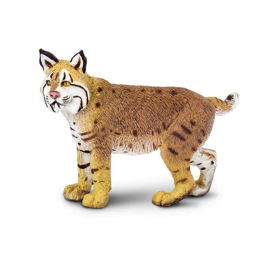 Bobcat Toy | Wildlife Animal Toys | Safari Ltd.
