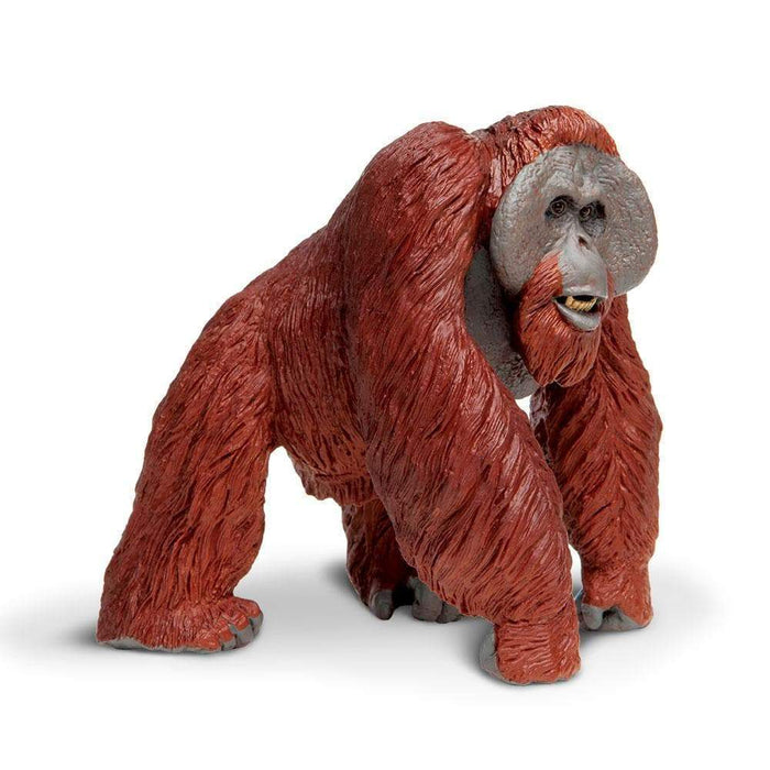 Bornean Orangutan - Safari Ltd®