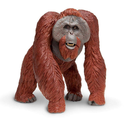 Bornean Orangutan Toy | Wildlife Animal Toys | Safari Ltd.