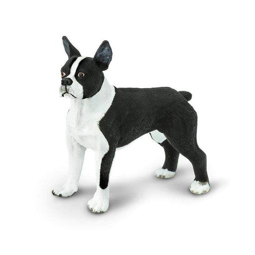 Boston Terrier - Safari Ltd®