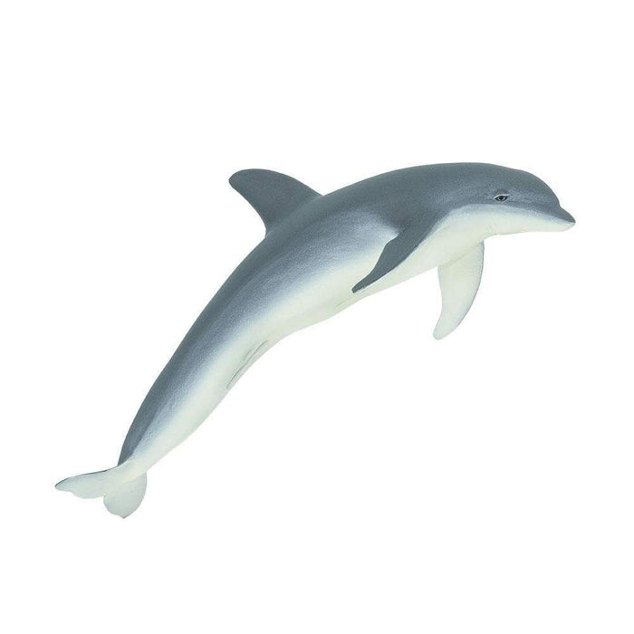 Bottlenose Dolphin - Safari Ltd®