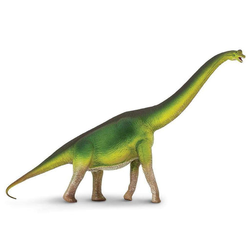 Brachiosaurus Toy | Dinosaur Toys | Safari Ltd.