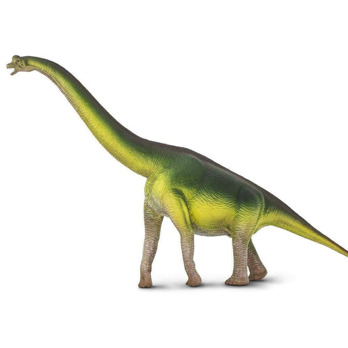 Brachiosaurus - Safari Ltd®