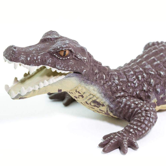 Caiman - Safari Ltd®