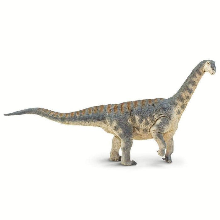 Camarasaurus Toy | Dinosaur Toys | Safari Ltd.