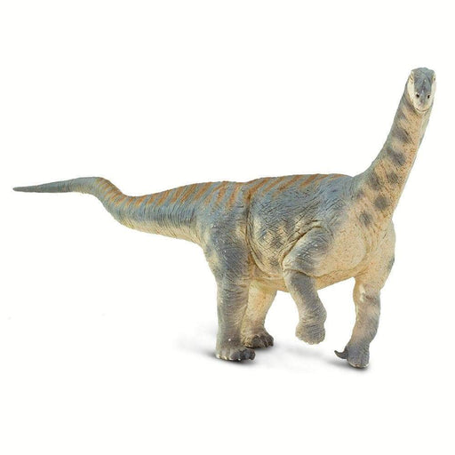 Camarasaurus - Safari Ltd®