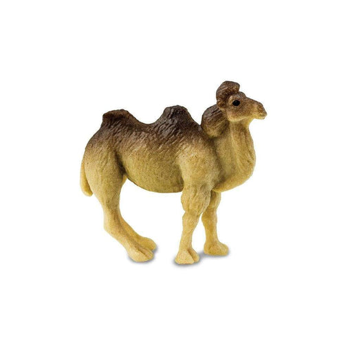 Camels - Good Luck Minis® - Safari Ltd®