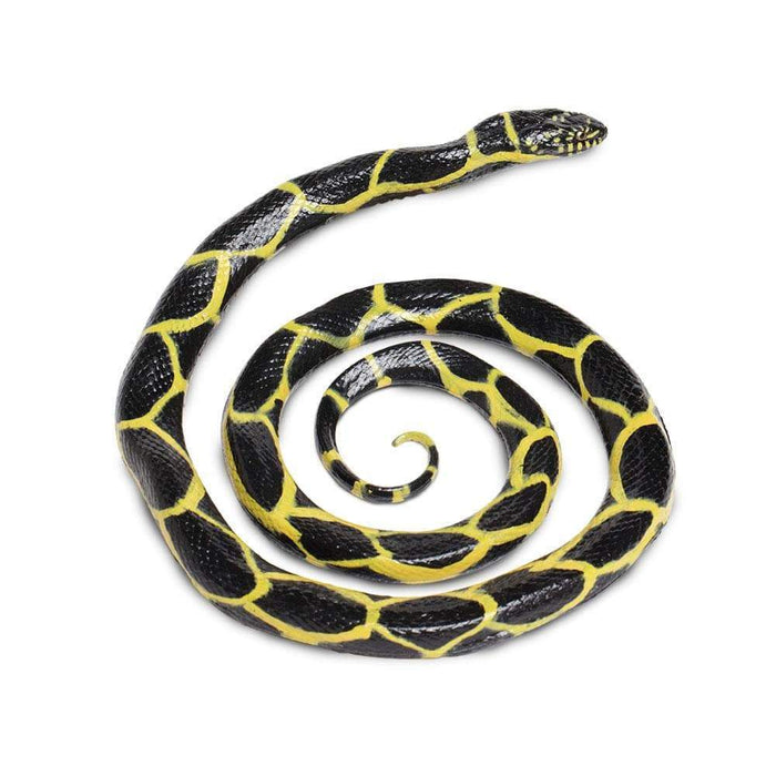 Chain Kingsnake - Safari Ltd®