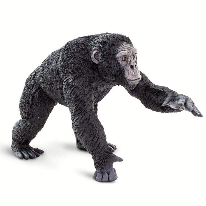 Chimpanzee - Safari Ltd®