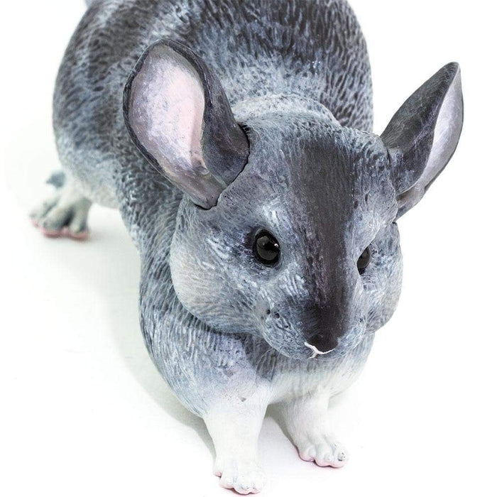 Chinchilla - Safari Ltd®