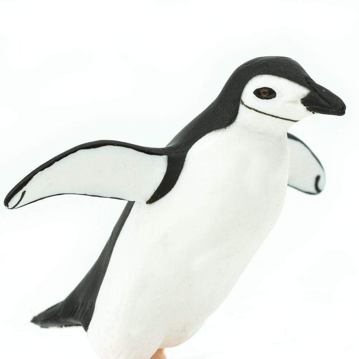 Chinstrap Penguin - Safari Ltd®