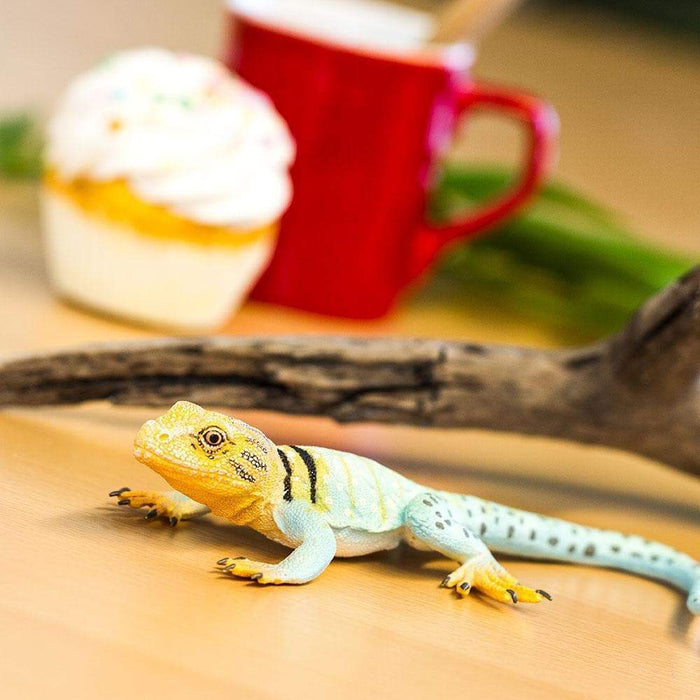 Collared Lizard - Safari Ltd®