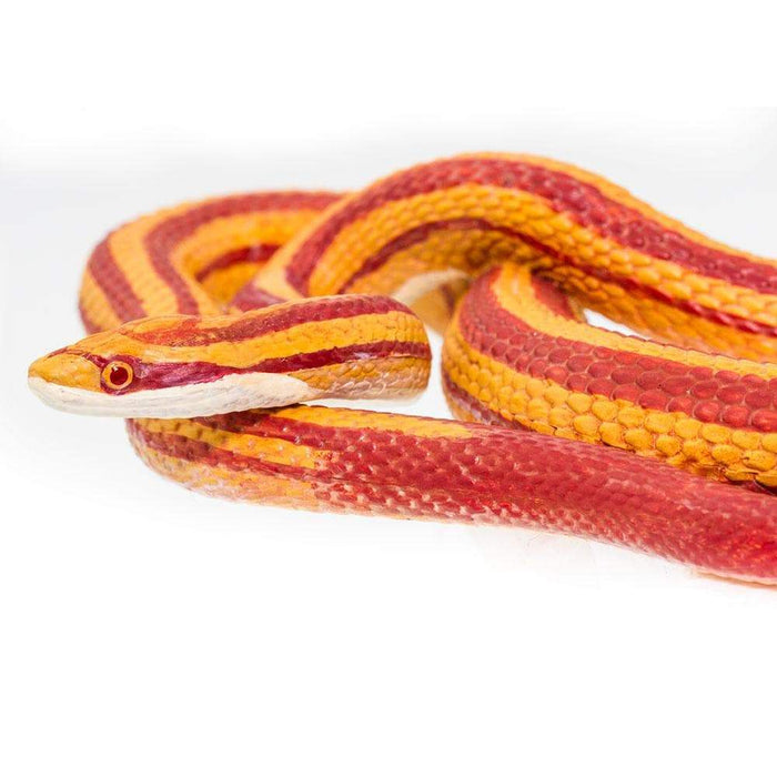 Corn Snake - Safari Ltd®