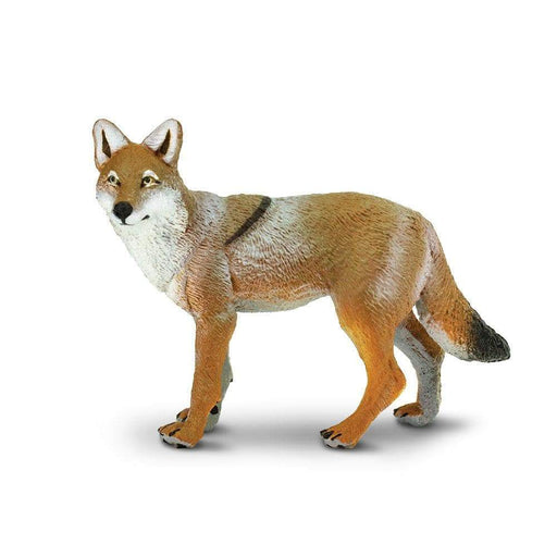Coyote Toy | Wildlife Animal Toys | Safari Ltd.