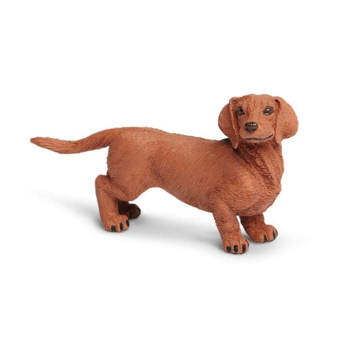 Dachshund - Safari Ltd®