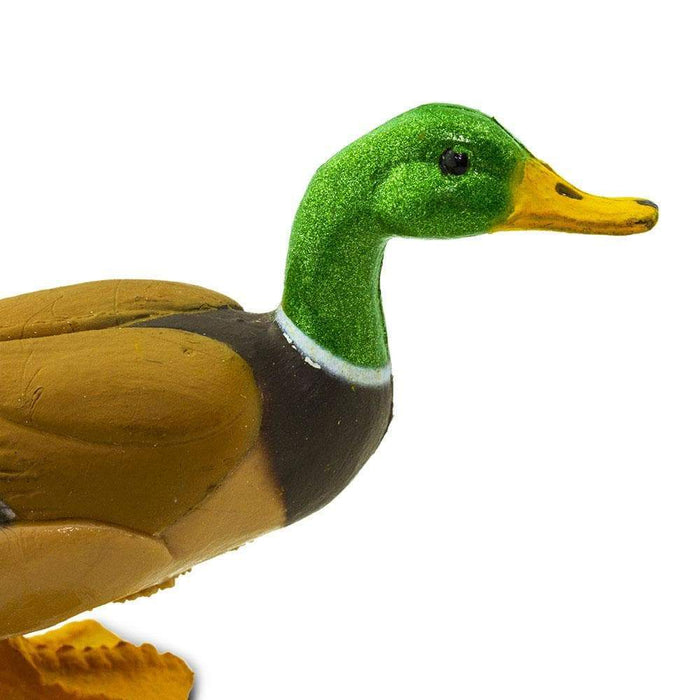 Duck - Safari Ltd®