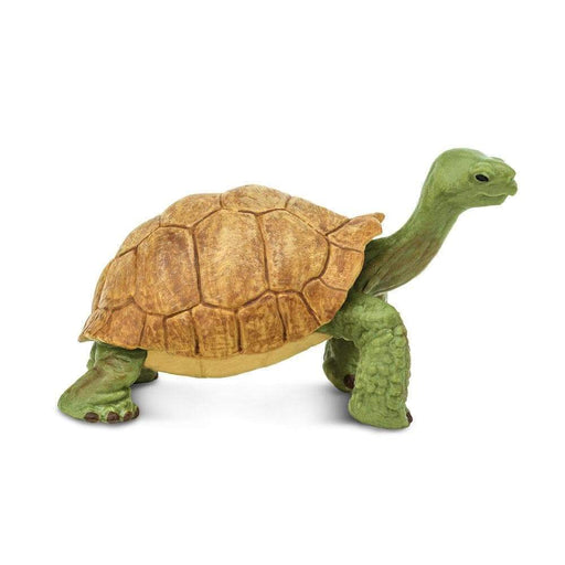 Giant Tortoise Toy | Wildlife Animal Toys | Safari Ltd.