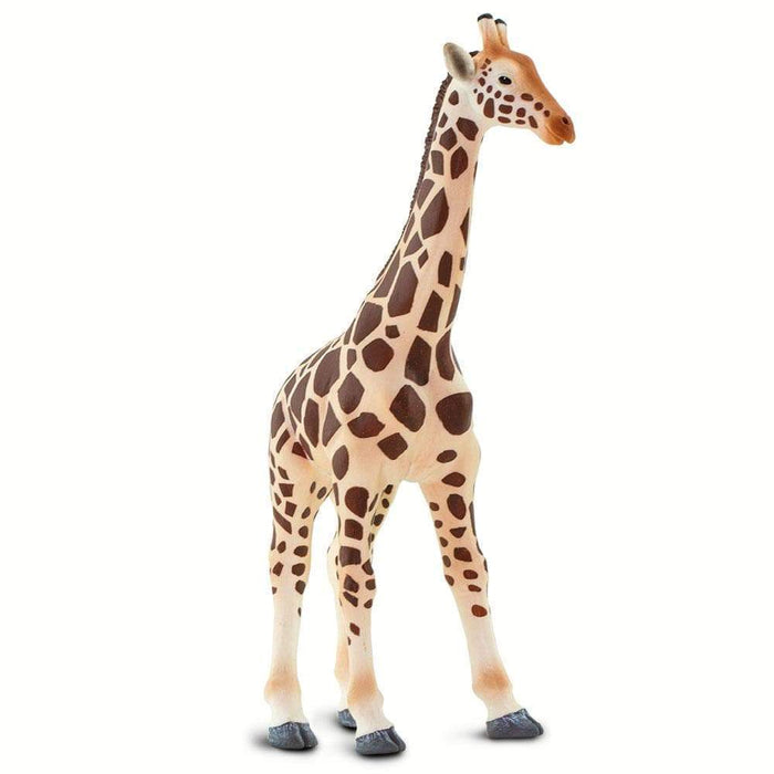 Giraffe - Safari Ltd®
