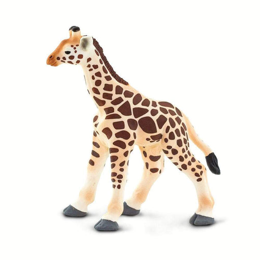 Giraffe Baby - Safari Ltd®