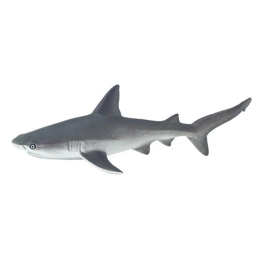 Gray Reef Shark Toy - Sea Life Toys by Safari Ltd.