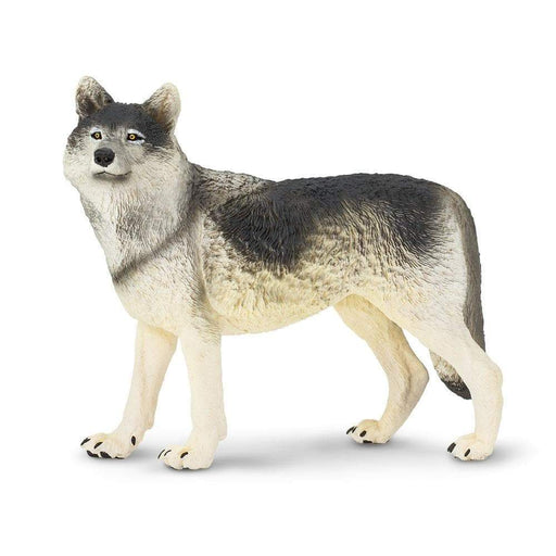 Gray Wolf Toy | Wildlife Animal Toys | Safari Ltd.