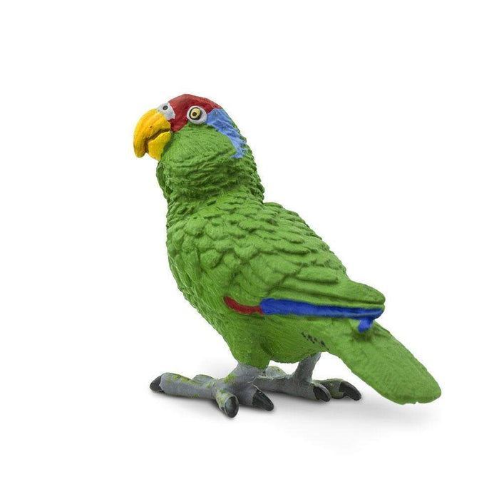 Green-cheeked Amazon Parrot - Safari Ltd®