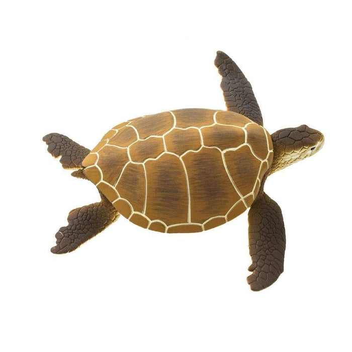 Green Sea Turtle - Safari Ltd®