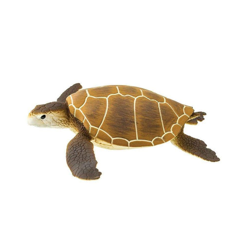 Green Sea Turtle Toy - Sea Life Toys by Safari Ltd.