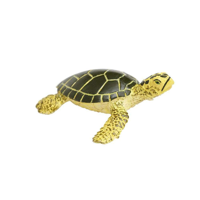 Green Sea Turtle Baby - Safari Ltd®
