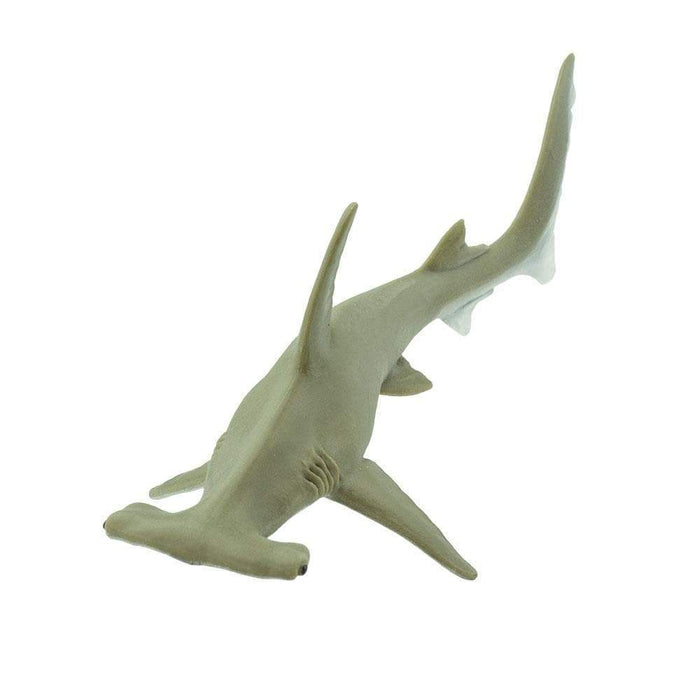 Hammerhead Shark - Safari Ltd®