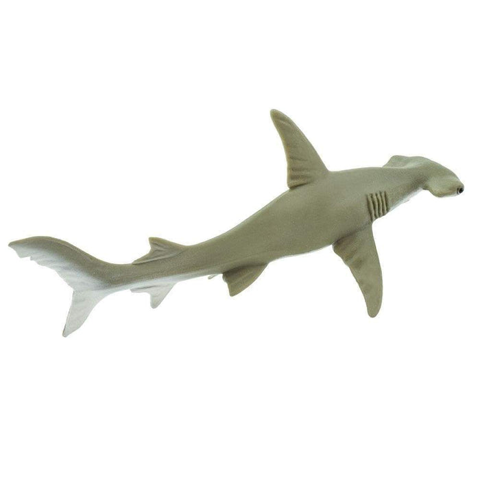 Hammerhead Shark Toy - Sea Life Toys by Safari Ltd.