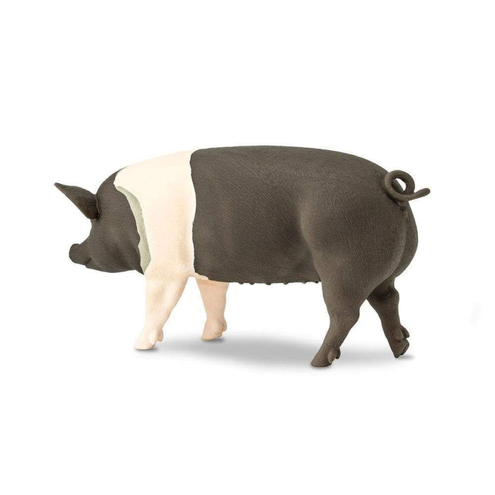 Hampshire Pig - Safari Ltd®