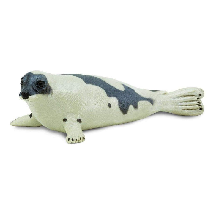 Harp Seal - Safari Ltd®