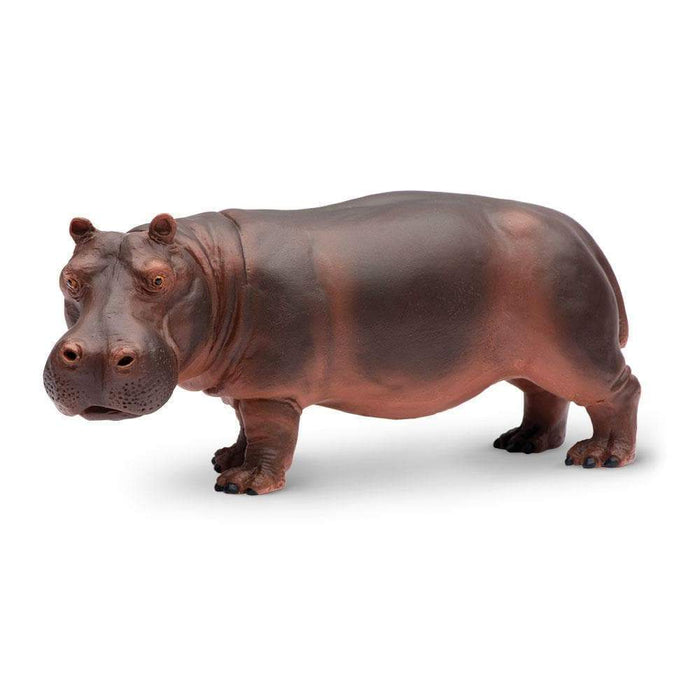 Hippopotamus - Safari Ltd®